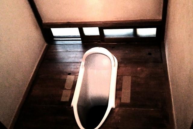 田舎のトイレにまつわる排せつの話
